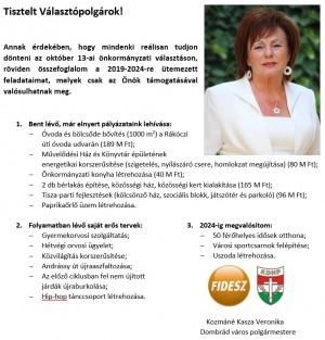 Önkormányzati választás október 13.